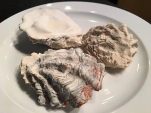 edible oyster shells