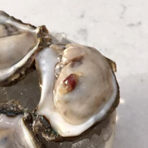 Freshly shucked oyster with pea crab